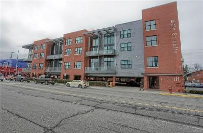Royal Oak Condo/Townhouse For Sale: 111 N Main Street #203