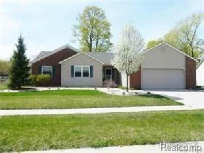 Oxford, Oxford Twp, Oxford Vlg Single Family Home For Sale: 25 Melvin J Court