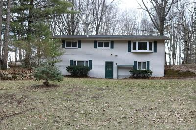 Single Family Home For Sale: 8266 Winans Lake Road