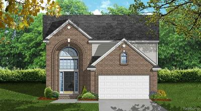 Westland Single Family Home For Sale: 8765 Oakridge Trail