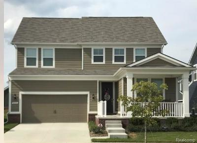 Canton, Canton Twp Single Family Home For Sale: 910 Harrison