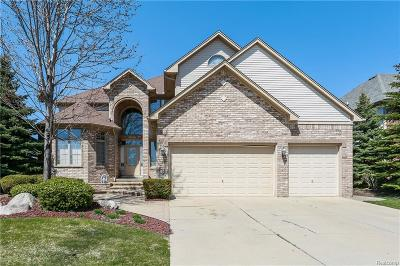 Clinton Twp Single Family Home For Sale: 18187 Canvasback Drive