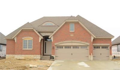 Macomb Twp Single Family Home For Sale: 49261 Monarch Drive