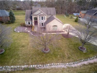 Canton Single Family Home For Sale: 7076 Stonebrook Court