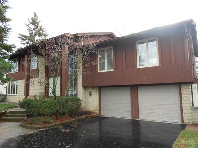 West Bloomfield Twp Single Family Home For Sale: 3293 Woodview Lake Road