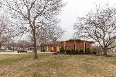 Livonia Single Family Home For Sale: 36471 Gardner Street
