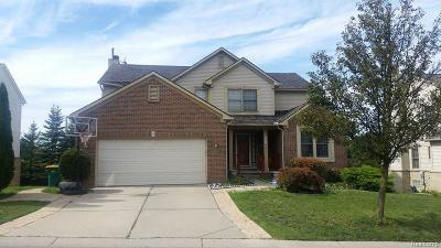 Novi MI Single Family Home For Sale: $368,999