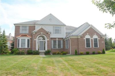 Northville Twp Single Family Home For Sale: 17113 Orchard Ridge Road