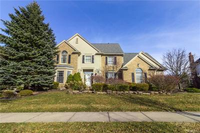 Novi Single Family Home For Sale: 22066 Picadilly Circle