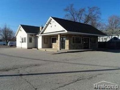 Port Huron Twp MI Commercial For Sale: $195,000