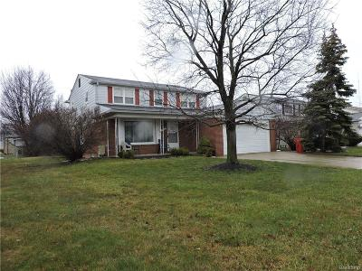 Southfield Single Family Home For Sale: 17040 Pennsylvania Street