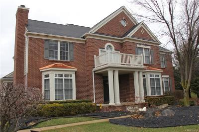 Canton, Canton Twp Single Family Home For Sale: 2196 Trinity Road