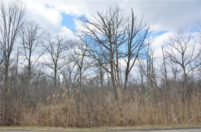 Grosse Ile, Gross Ile, Grosse Ile Twp Residential Lots & Land For Sale: Vacant Meridian (Parcel 2)