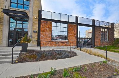 Detroit Condo/Townhouse For Sale: 460 W Canfield Street #206
