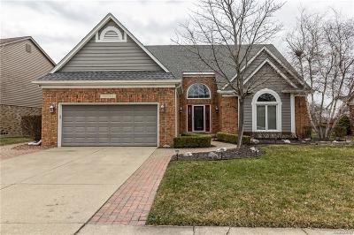 Macomb County Single Family Home For Sale: 43550 Columbia Drive