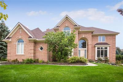 Rochester Hills Single Family Home For Sale: 1964 Blue Grass Court
