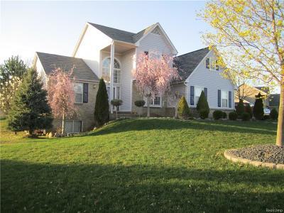 White Lake Single Family Home For Sale: 2255 Reidsview E