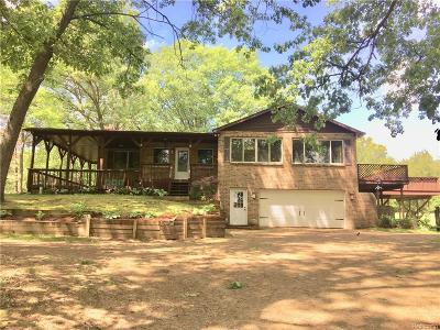 Oakland County Single Family Home For Sale: 7605 Buckhorn Lake Road