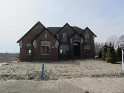 Shelby Twp MI Single Family Home For Sale: $589,900