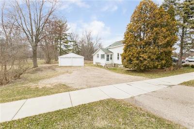 Novi Single Family Home For Sale: 23777 Novi Road