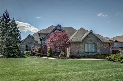 Green Oak Twp MI Single Family Home For Sale: $1,000,000
