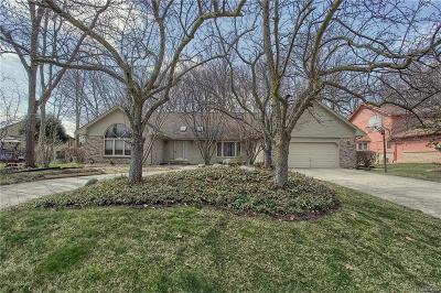 Farmington Single Family Home For Sale: 30413 Knighton Drive