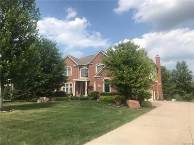 Rochester, Rochester Hills, Oakland Twp, Lake Orion Vlg, Clarkston, Orion Twp, Ortonville, Ortonville Vlg, Brandon Twp, Independence Twp Single Family Home For Sale: 3783 Red Maple Court