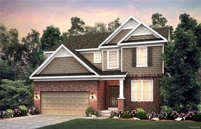 Ann Arbor Single Family Home For Sale: 711 Groveland Circle
