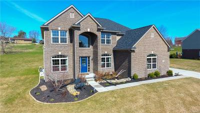 Oxford Single Family Home For Sale: 3788 High View Drive