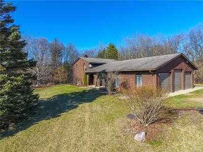 Oakland County Single Family Home For Sale: 365 S Coats Road