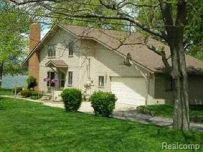 Brandon Twp Single Family Home For Sale: 2490 Allen Road