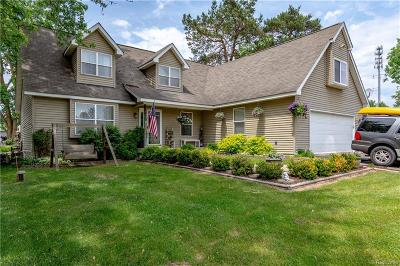 Oakland County Single Family Home For Sale: 470 Bluewater