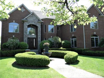 Oxford Single Family Home For Sale: 840 High View Court