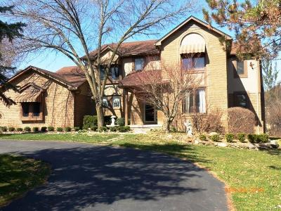 Northville MI Single Family Home For Sale: $439,900