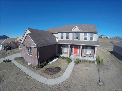 Oxford Single Family Home For Sale: 1429 Glass Lake Circle