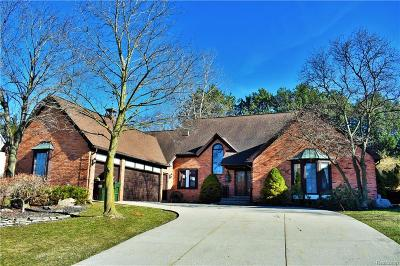Rochester Hills Single Family Home For Sale: 3139 Greenspring Lane