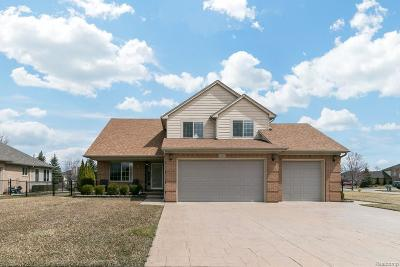 Macomb Twp Single Family Home For Sale: 55296 Cranberry Drive