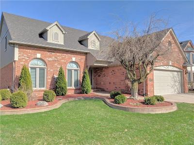 Troy Single Family Home For Sale: 6230 Brittany Tree Drive