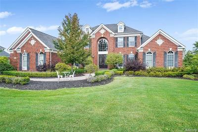 Novi Single Family Home For Sale: 50254 Drakes Bay Drive
