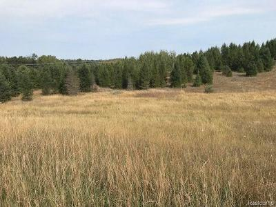Manistee County Residential Lots & Land For Sale: 9 Mile Road