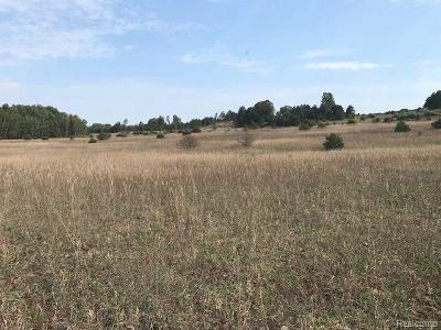 Manistee County Residential Lots & Land For Sale: Pasanen