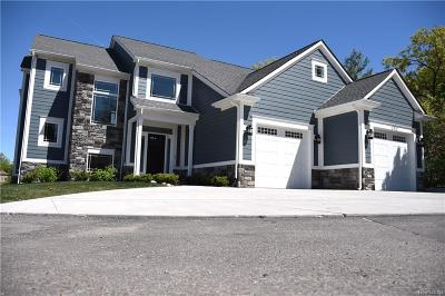 Lake Orion Vlg MI Single Family Home For Sale: $739,000
