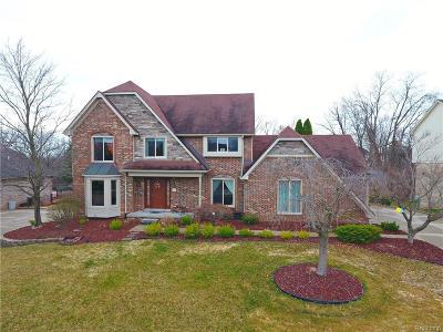Farmington Hills Single Family Home For Sale: 37047 Birwood Court