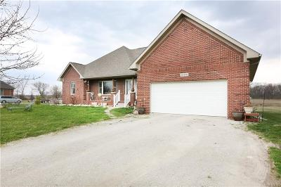 Berlin Twp MI Single Family Home For Sale: $299,900
