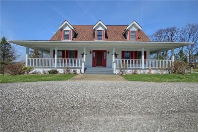 Livingston County Single Family Home For Sale: 11399 Lisa Lori Lane