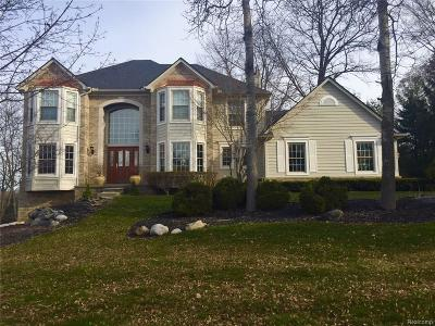Commerce Twp Single Family Home For Sale: 1862 Bay Mist