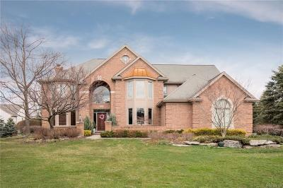 Rochester Hills Single Family Home For Sale: 2526 Golf Crest Drive