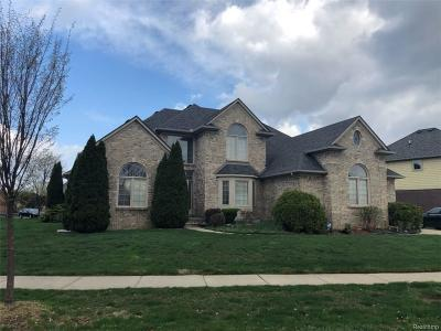 Rochester Hills Single Family Home For Sale: 1094 Rochelle Park Drive
