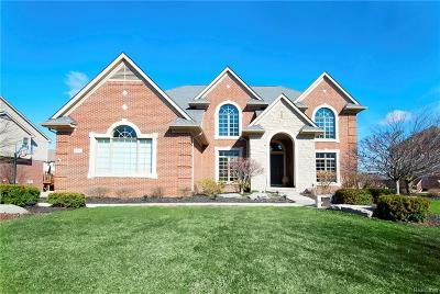 Northville Twp Single Family Home For Sale: 44103 Cypress Point Drive