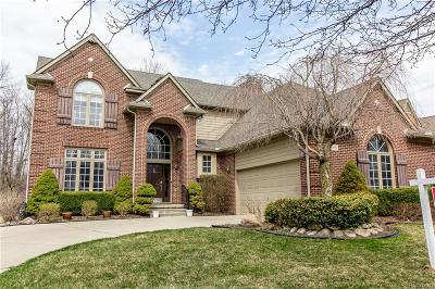 Northville Single Family Home For Sale: 18190 Cascade Drive
